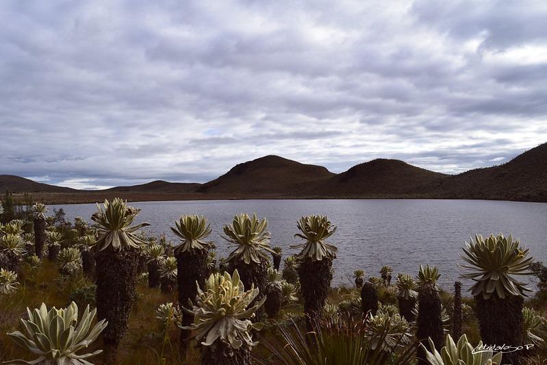 El Angel Ecological Reserve