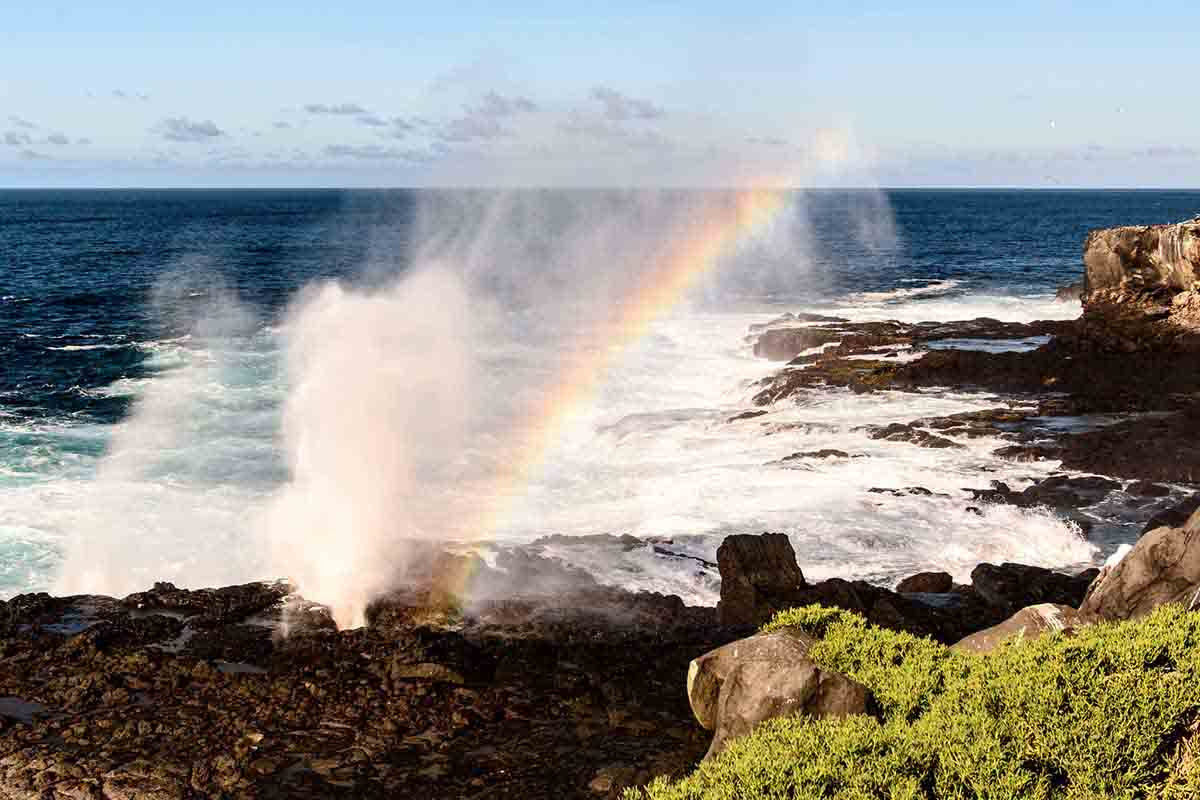 Suarez point | Galapagos islands