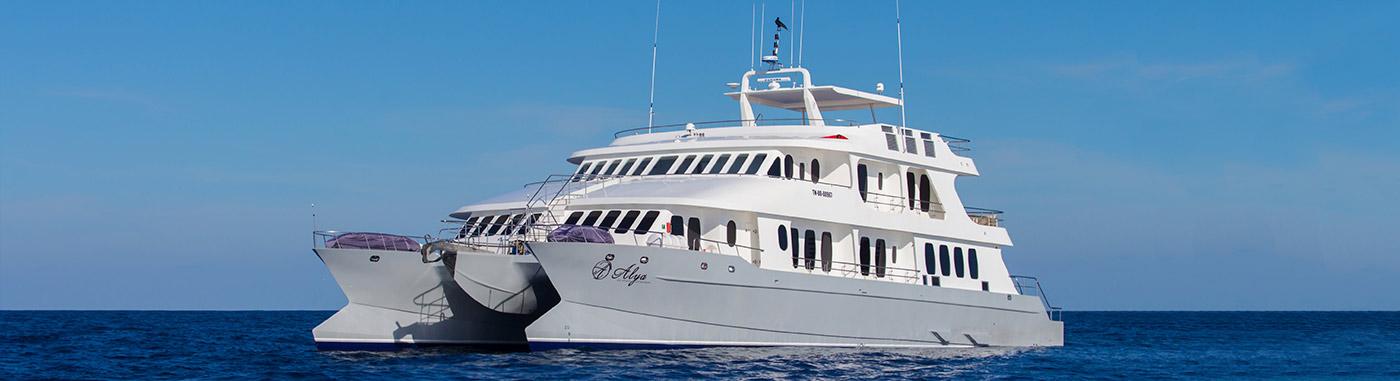 alya  catamaran