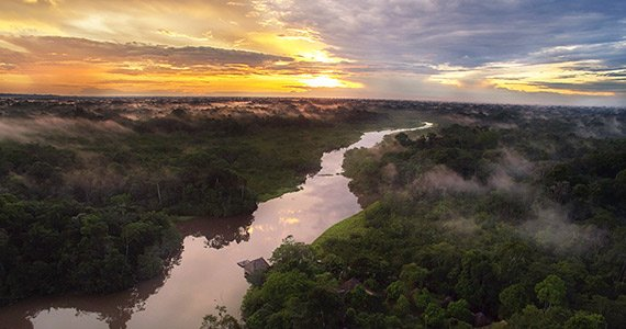 Amazon Rainforest | Ecuador