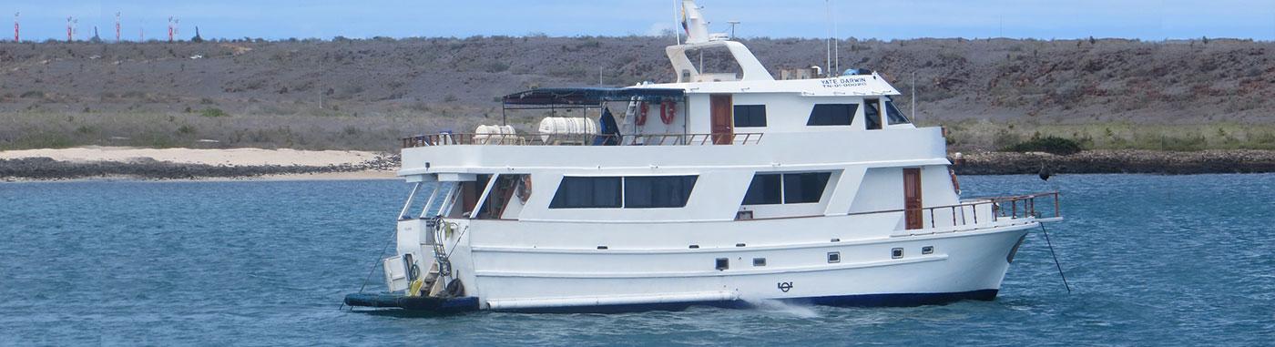 Galapagos economy class cruises