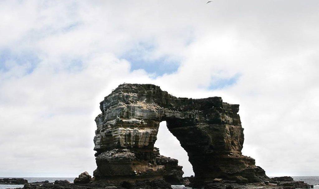 Darwin island Galapagos