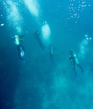 deep dive galapagos