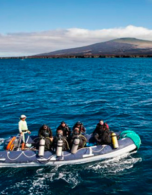 diving tours galapagos