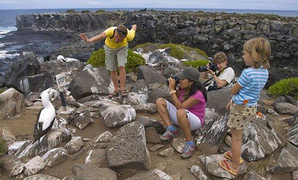 Galapagos birds | Photography