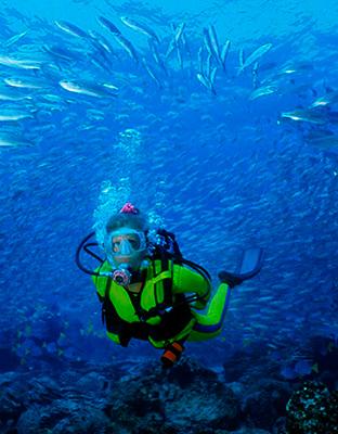 galapagos inmersions