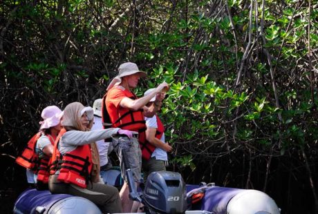 Galapagos islands trips for family