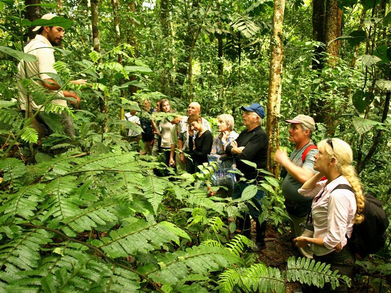 Jungle Trekking | Ecuador