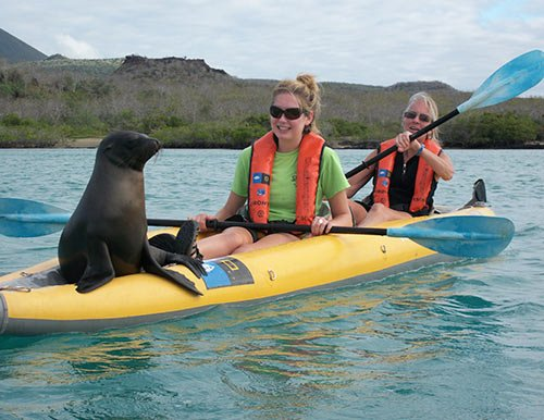 Kayaking in Galapagos Islands