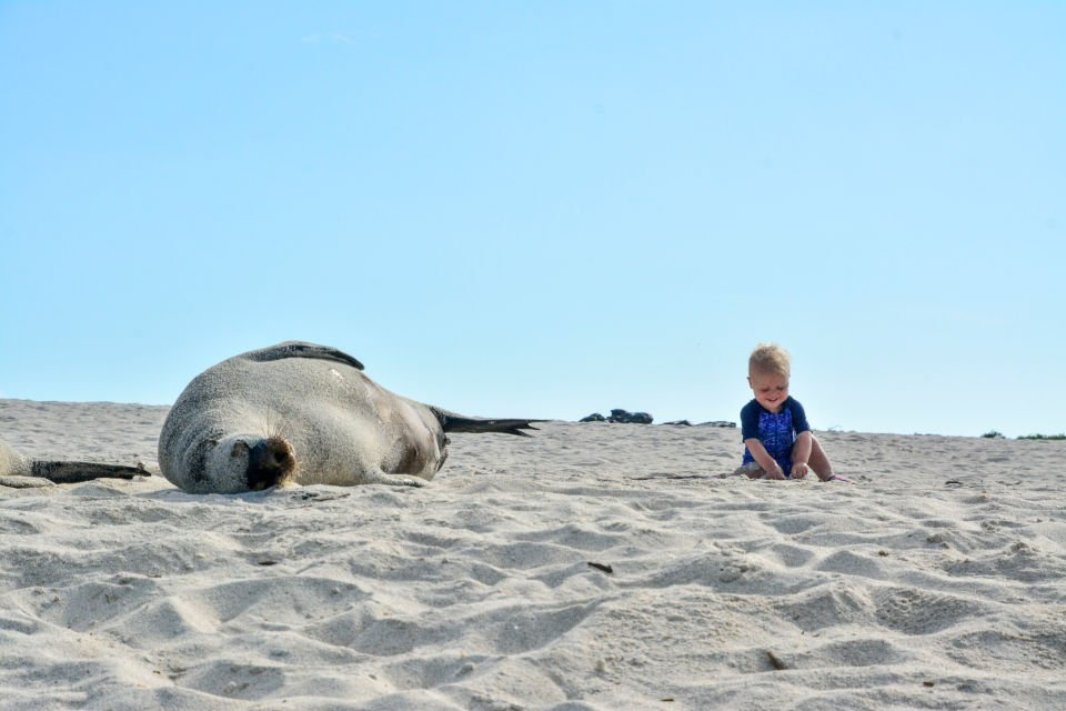 Guide to Traveling to Galapagos with a Baby Voyagers Travel Specialists