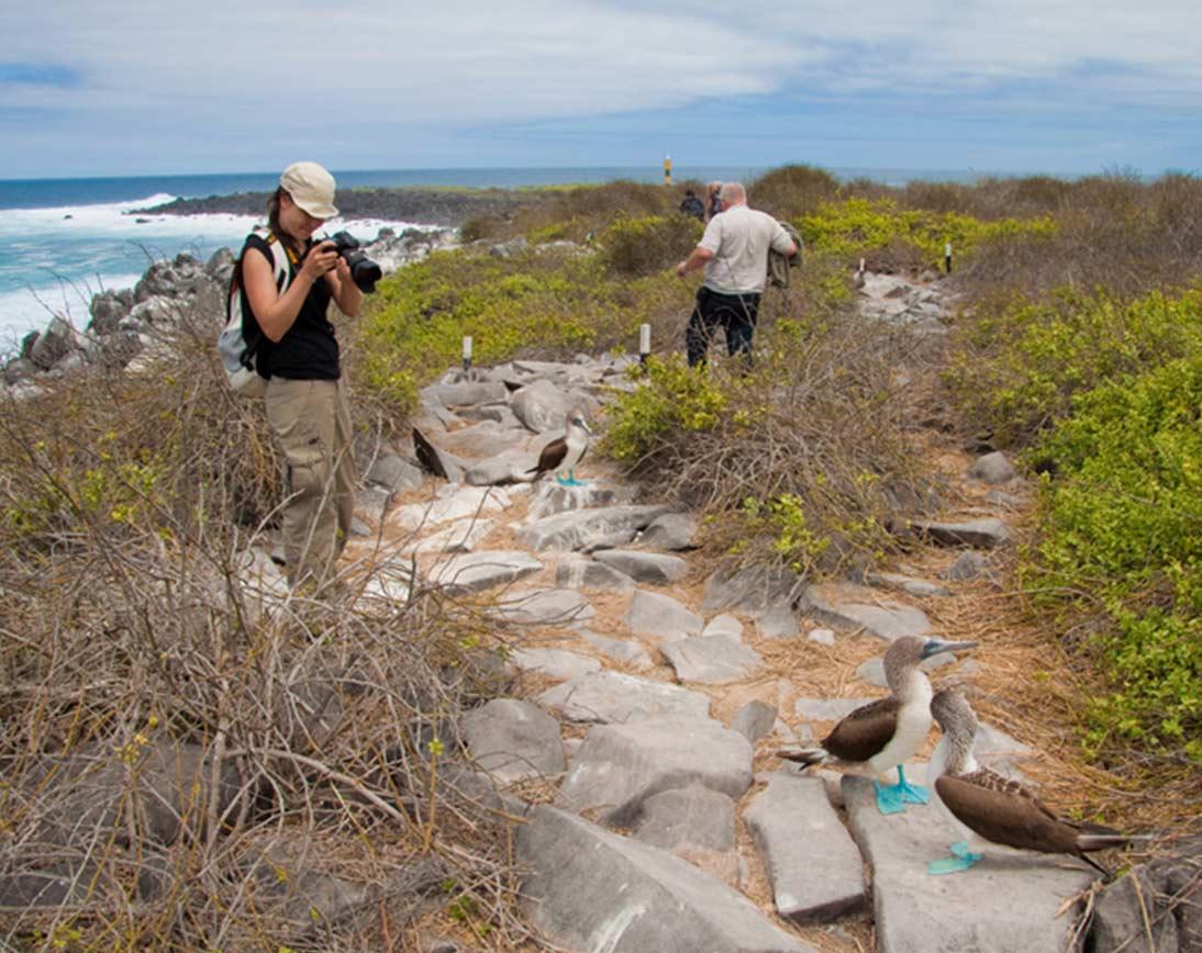 North Seymour Island | Galapagos islands