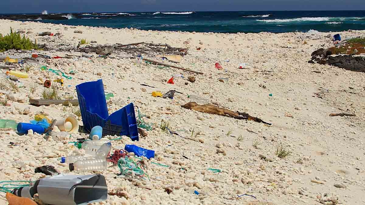 Plastic pollution   Galapagos