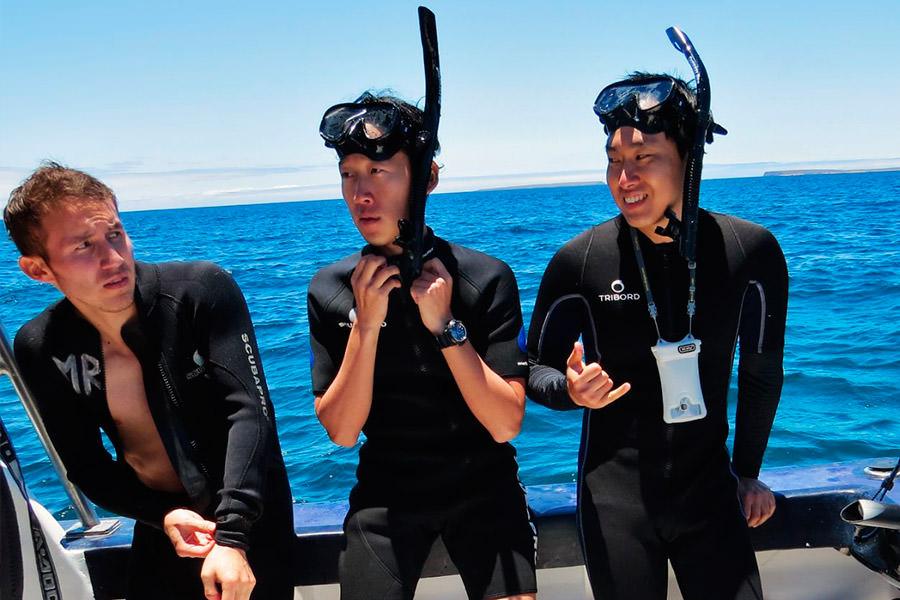 Wetsuit | Galapagos islands