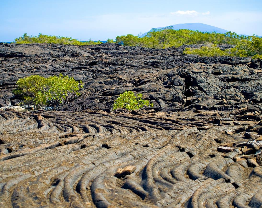 Sierra negra volcano | Galapagos islands