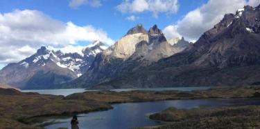 patagonia horns