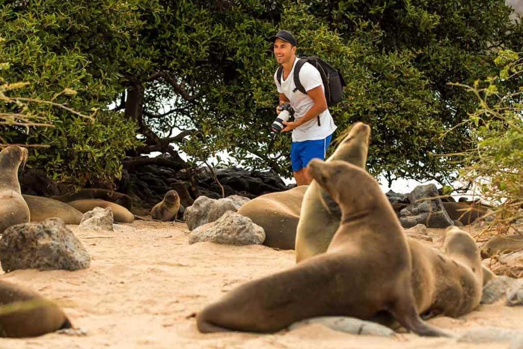 Galapagos tourism
