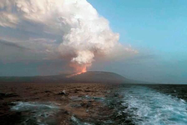 Wolf volcano