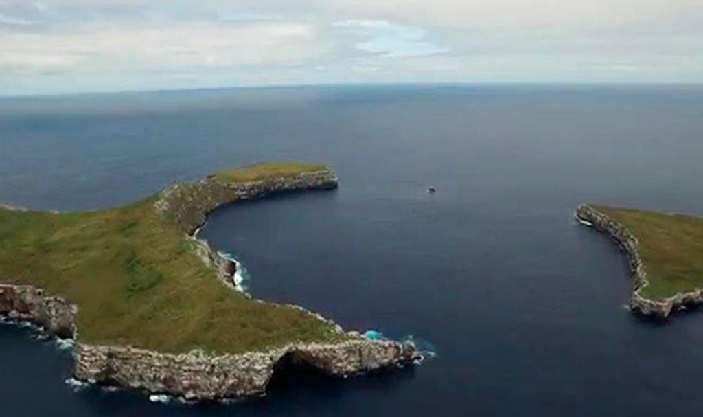 Wolf island Galapagos