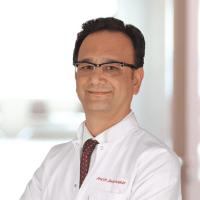 Prof. Dr.  Şahin  Kabay