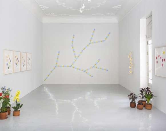 Un jardín dentro de un cubo blanco | Spencer Finch, Botánica