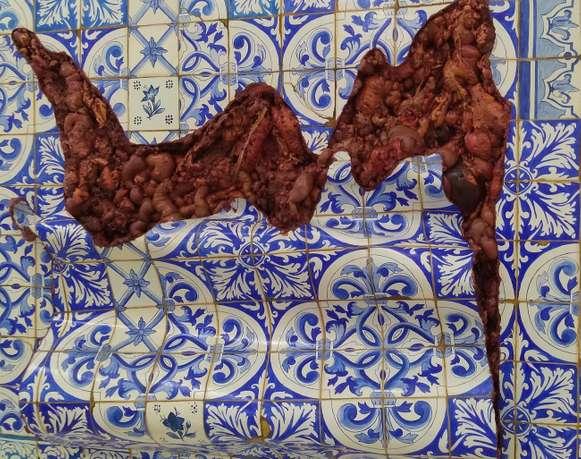 Para abrir las heridas de América Latina | Adriana Varejão. Otros cuerpos detrás