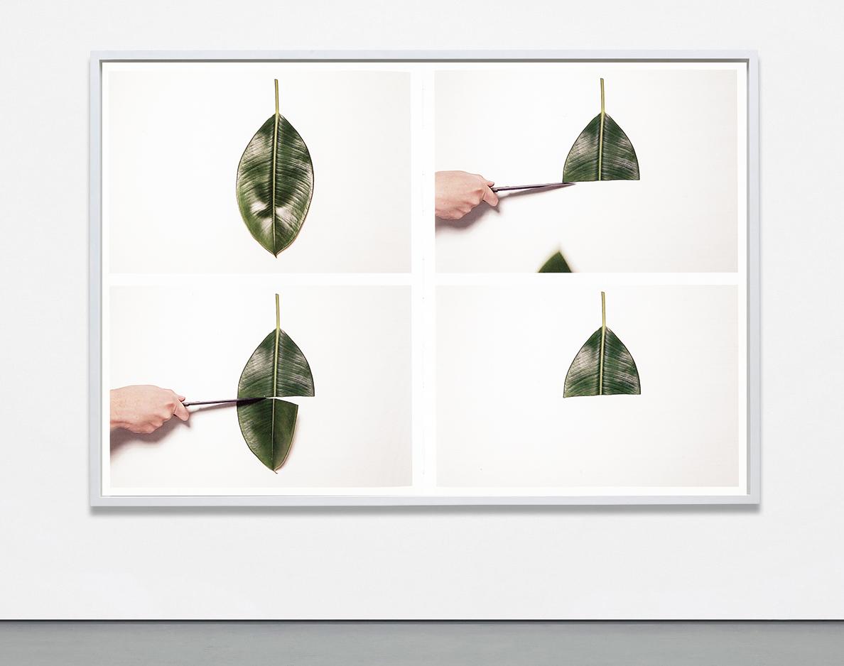 Fragmentario, Karla Leyva. Courtesy of the artist