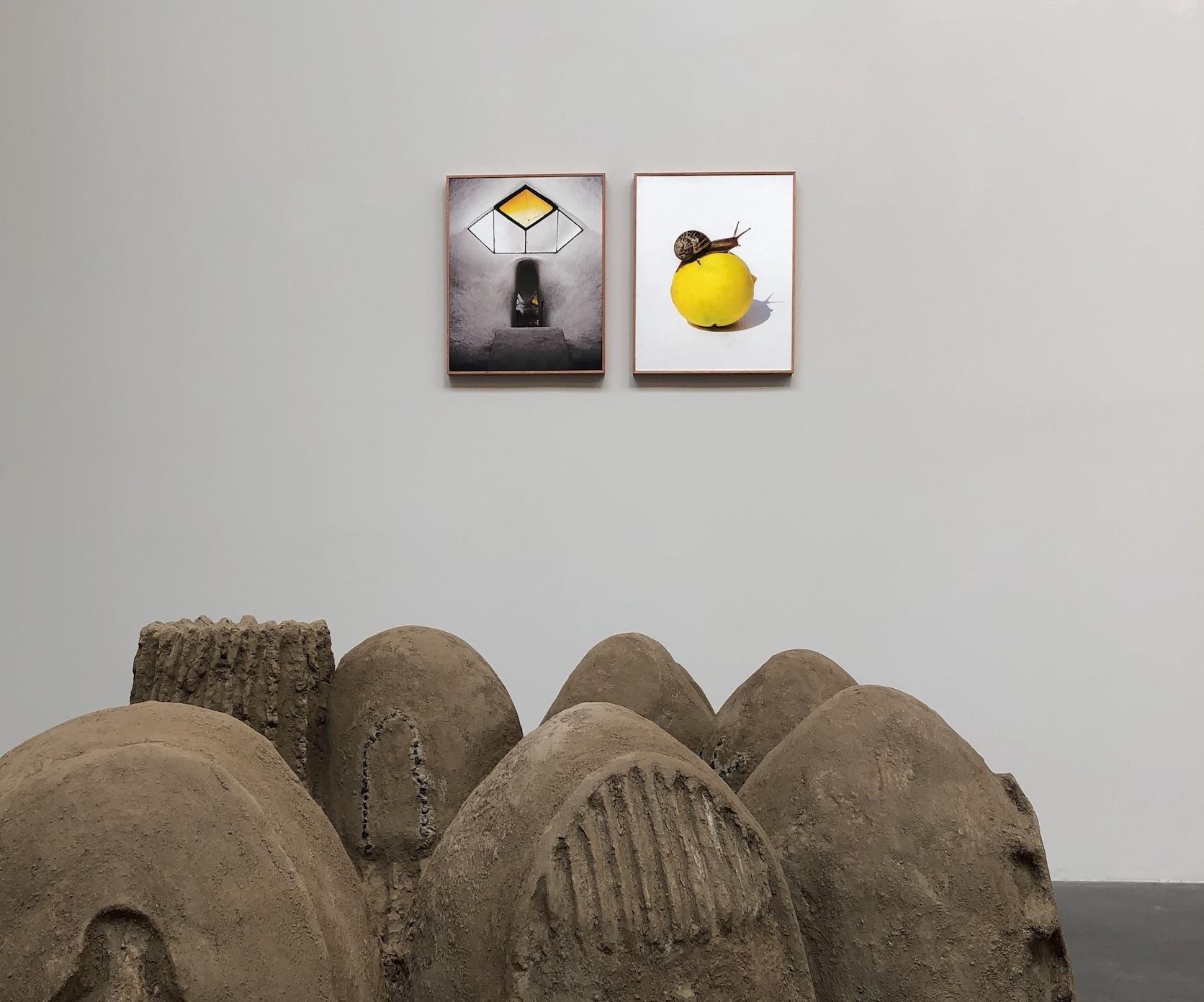 Galería Agustina Ferreyra, Ramiro Chaves & Ulrik López. Kurimanzutto, Mexico City, 2021. Photo: Onda MX