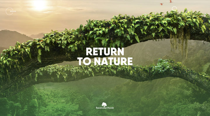 Rainforest Foods experience