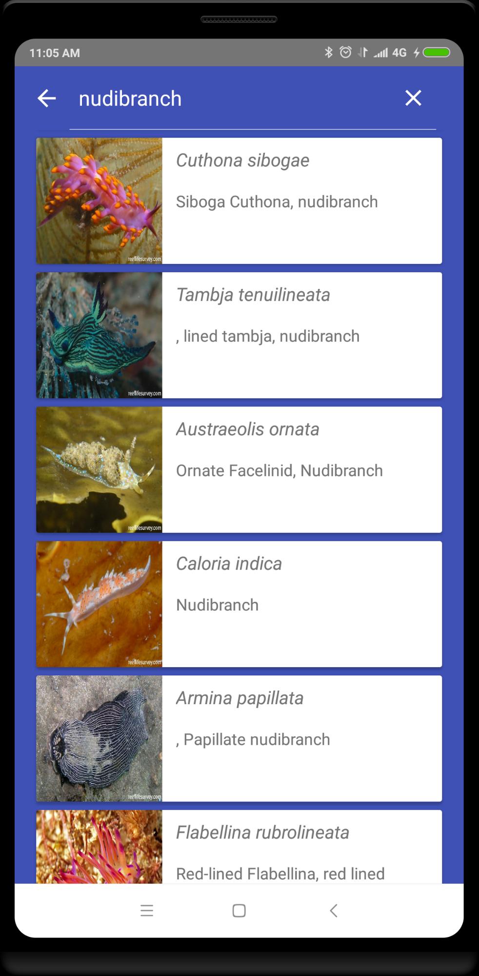 ReefLifeSurvey Preview 1