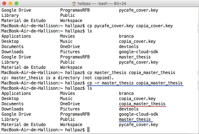 Terminal de comando mostrando a forma correta de se copiar uma pasta
