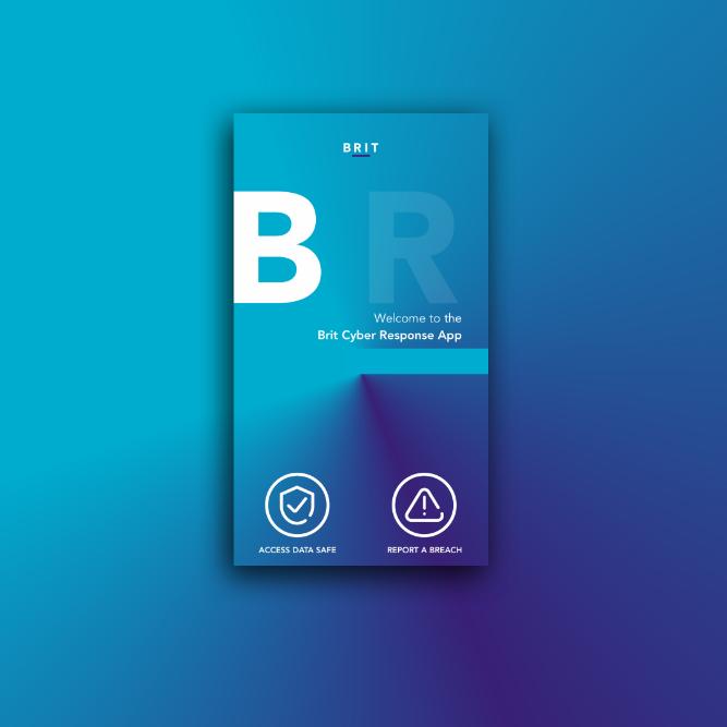 Brit Cyber Response App