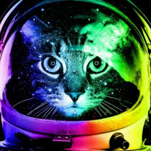 Kitty_Kat