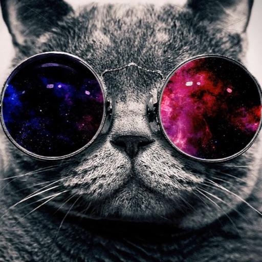 💚 Galacticat 💙