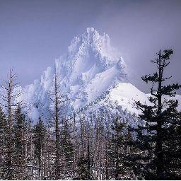 Mt. Shasta Mom