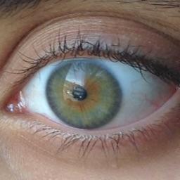 Mimy's eyes