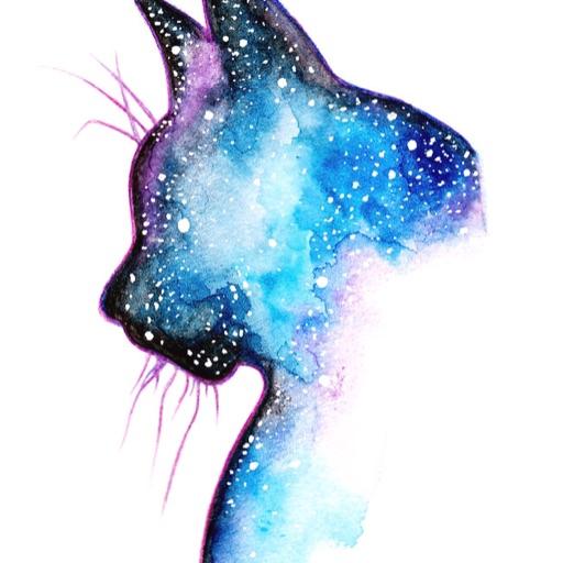 Galaxycat527