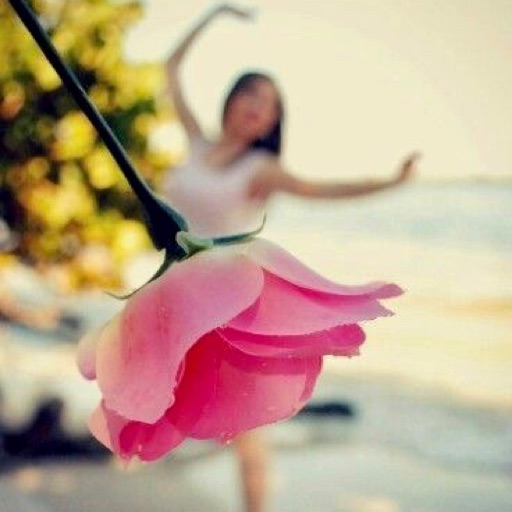 Pink Blossom💝2018💝