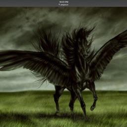 Sky(horselover)