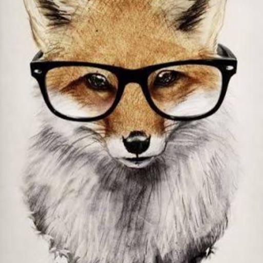 Bella the Fox 🦊