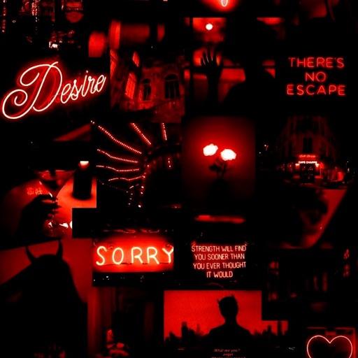 Bo-Bo🖤 SORRY