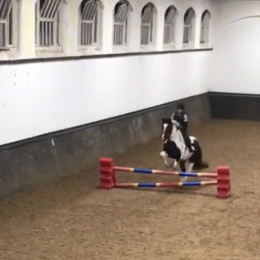 Horse_Rider203