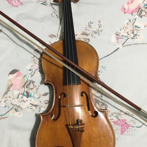 Violin1311