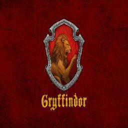 Gryffindorkitty