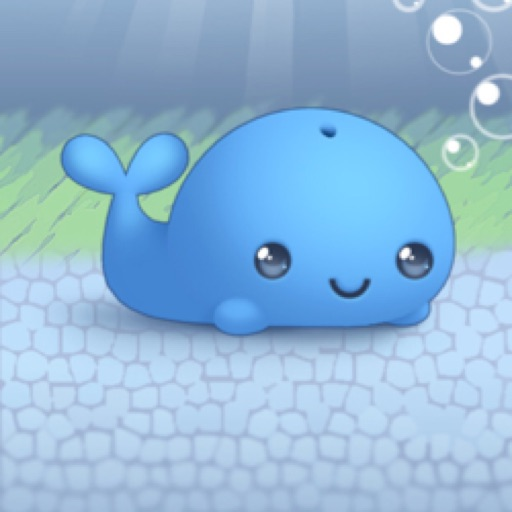 littlewhale