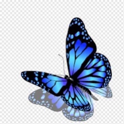 Butterflygirl 🦋💖🍂🌻🍁