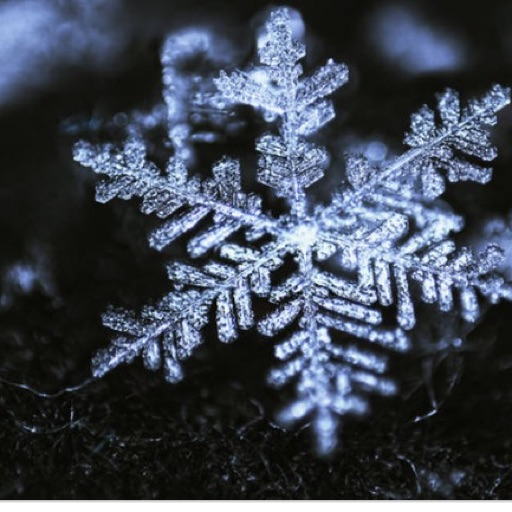 🎀Coco Snow Rainbow🎀