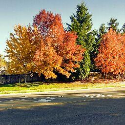 autumn22