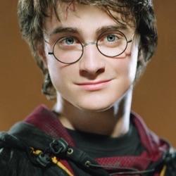 ⚡️Teen HP Wolf⚡️