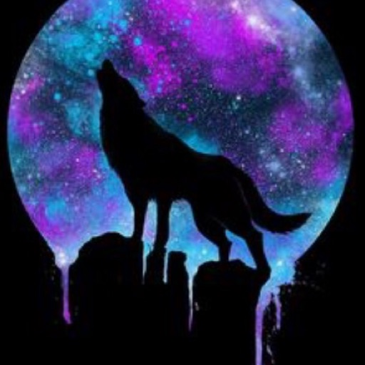 Galaxy artsy wolf 🐺