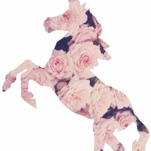 Unicorn35